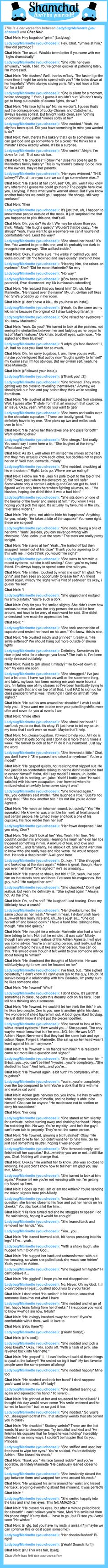 A conversation between Chat Noir and Ladybug/Marinette (you choose!)