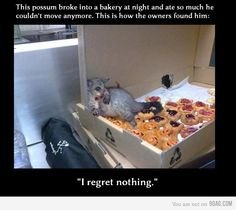 I wouldn't regret a thing either, buddy.  ...lol too funny!