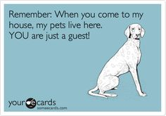 Remember: When you come to my house, my pets live here. YOU are just a guest!