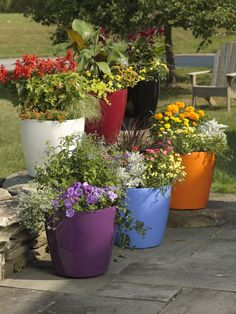 Viva Self-Watering Rolling Planter, Round Large Dress up your landscape with these tall planters that are self watering planters and have a guarantee against fading. Tall Planters, Patio Planters, Planter Pots, Planter Ideas, Flower Planters, Cheap Planters, Porch Planter, Modern Planters, Concrete Planters