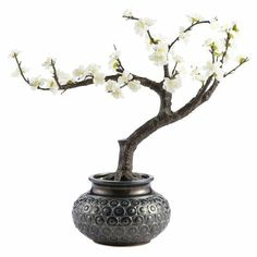 Cherry Blossom Bonsai Arrangement from Pier one imports