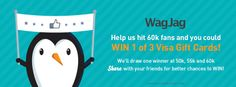 Help %23WagJag hit 60k fans and you could WIN 1 of 3 Visa gift cards! Share with your friends for better chances to %23WIN!