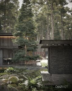 The dark palette of cottage architecture fits organically into the colors of the coniferous forest.