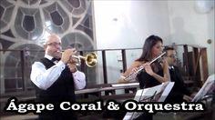 Músicos para Casamento - Paróquia Nossa Sra do Bom Conselho - Because yo...