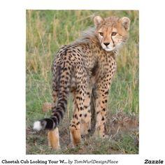 Cheetah Cub Looking Your Way Jigsaw Puzzle