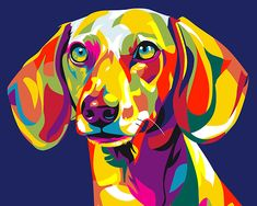 iFymei DIY Oil Painting Kit , Paint by Numbers for Adults & Kids & Beginner , 16 x 20 inch Canvas & Acrylic Paints - Colorful Dog Animal Paintings, Animal Drawings, Art Drawings, Pop Art, Arte Dachshund, Colorful Animals, Horse Art, Medium Art, Numbers