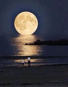 Supermoon rising over a beach in Cape Town.