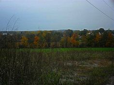 Autumn Scene taken off Zion Road near Plainfield