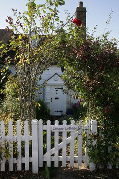 ... enclose the cottage garden in a white picket fence with roses climbing the garden gate... and maybe I will.