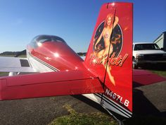 Airbrushed Pinup Girl on a Plane Painted by Mike Lavallee of Killer Paint - www.killerpaint.com