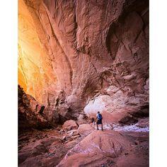 Muley Twist Canyon, Capital Reef National Park, Utah.