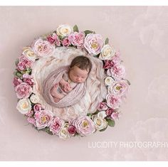 New floral nest digital props just added! This one is perfect for those valentines newborns! Save space, time and money! Up sell digital fine art to your clients :)