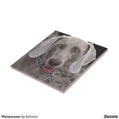 Weimaraner Dog Ceram