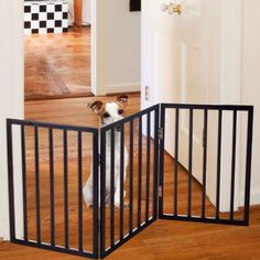cat fence indoor - Foldable, Free-Standing Wooden Pet Gate- Light Weight, Indoor Barrier for Small Dogs / Cats by Petmaker- 24 Inch, Dark Brown, Step Over Doorway Fence *** Be sure to check out this awesome product. (This is an affiliate link) Diy Dog Gate, Pet Gate, Indoor Gates, Freestanding Dog Gate, Gate Lights, Pet Dogs, Dog Cat, Pug Puppies, Chihuahua