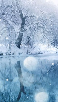 ✯ Winter-Snowfall
