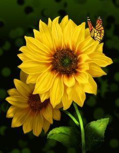 Creating these wonderful flowers for my etsy shop and soon to open shop on Wonderful Flowers, Happy Flowers, Flowers Nature, Beautiful Butterflies, My Flower, Yellow Flowers, Wild Flowers, Beautiful Flowers, Sun Flowers