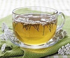 Here we will show you how to make a great hot beverage or tincture to help fight against the common cold and flu, using Yarrow and Boneset. Herbal Remedies, Natural Remedies, Tea For Colds, Herbal Plants, Herbal Tea, Best Tea, Fresh Herbs, How To Stay Healthy, Herbalism