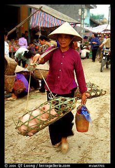 Woman carrying two live pigs, That Khe market. Northest Vietnam (color)