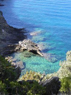Ile de Port-Cros - Provence-Alpes-Côte d'Azur - France