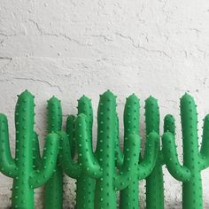 Silly Succulent Cactus Dog Chew Toy | Waggo Home