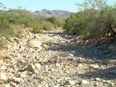 Dry Wash Nevada Desert, Deserts, Postres, Dessert, Plated Desserts, Desserts