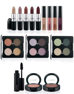 MAC- Makeup Art Collection-I really like eye shadow and need a refill soon.