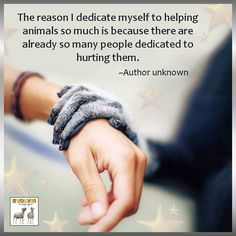 The reason I dedicate myself to helping animals so much is because there are already so many people dedicated to hurting them. --Author unknown