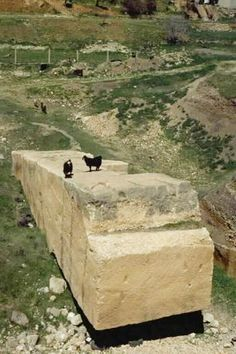 Baalbek Trilithon - A Wall With Two Pasts Why would they chose to cut blocks this big and how did they move them at all, let alone rough terrain? Ancient Mysteries, Ancient Ruins, Ancient Artifacts, Ancient History, Unexplained Mysteries, Archaeological Discoveries, Archaeological Finds, Baalbek, Stone Work