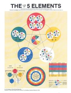 Acupuncture and Reflexology-Charts, Posters and Cards