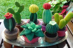 Decorative Amigurumi Cactus Flower Making – New Fashion, New Models yaai Cute Crochet, Crochet Yarn, Crochet Toys, Crochet Flower Patterns, Crochet Flowers, Cactus Flower, Cactus Plants, Indoor Cactus, Cactus Art