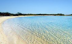 Tha amazing beach of Torre Guaceto near Ostuni, Salento, Italy.
