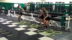 Volleyball Strength and Conditioning