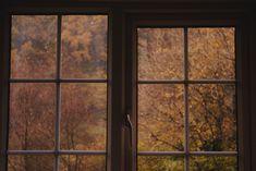 Sarah / Irish / Halloween, Autumn, Horror, 2 spooky 4 U Monet, Pinterest Inspiration, Autumn Cozy, Cosy Winter, Autumn Aesthetic, Best Seasons, We Fall In Love, Fall Halloween, Aesthetic Pictures