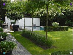 Anne Laansma - Pure simplicity in a modern garden with swimming pool - High ■ Exclusive . Modern Garden Design, Contemporary Garden, Landscape Design, Modern Landscaping, Outdoor Landscaping, Small Gardens, Outdoor Gardens, Backyard Ideas For Small Yards, Rooftop Garden