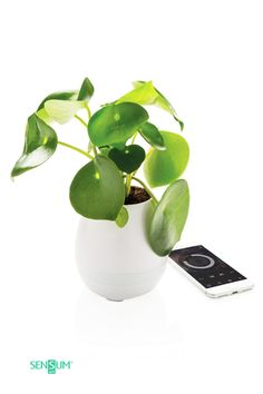 Flowerpot Speaker Listen to your favourite tunes while you grow your favourite plant or herbs and your at the same time with this fun When you touch the it will play a song automatically and you can even use it as a piano. connects to your device via Usb, Smartphone, Design Vase, High Tech Gadgets, Bluetooth Speakers, Flower Pots, Promotion, Latte, Piano