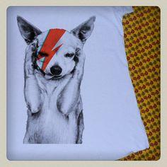 <3 - [ziggy dog]
