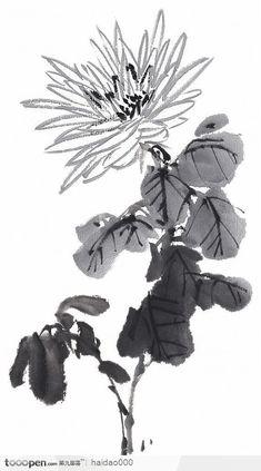 Sumi E Painting, Basic Painting, Japan Painting, Japanese Art Prints, Japanese Drawings, Chrysanthemum Drawing, Chinese Painting Flowers, Chinoiserie, Tinta China