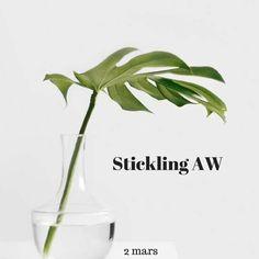 Stickling-och fröbyte AW