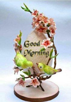 472 best Good Morning Gif photos by sonusunariya Good Morning Love Gif, Lovely Good Night, Good Morning Images Flowers, Good Morning Wallpaper, Good Morning Coffee, Good Morning Photos, Good Morning Messages, Good Night Image, Good Morning Greetings