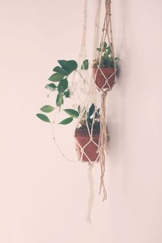 Mini macrame plant hanger in Home & Garden, Yard, Garden & Outdoor Living, Gardening Supplies | eBay cheap buy here
