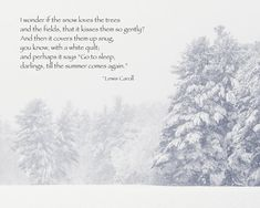 Lewis Caroll Quote, Winter Snow New England Winter, Winter Trees, Forest, Winter Quote, Surreal Mysterious, Large Wall Art Fine Art Print