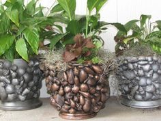 Things Created By Me: Seashell Planter