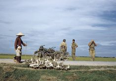 On the road from Namdinh to Thai Binh, Indochina, May 1954. One of the last photos of Robert Capa, who died in Thái Binh in May 25th 1945 where he steps on the mine.