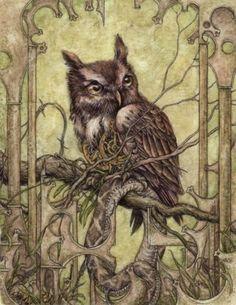 Owl - artist: Jeremy Hush