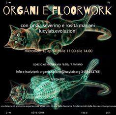 http://www.lucylab.org/organi-e-floorwork/