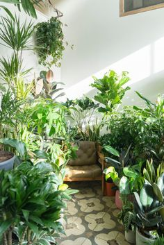 Conservatory archives in london mini gardens озеленение, дом Room With Plants, House Plants Decor, Plant Decor, Conservatory Garden, Deco Nature, Plant Aesthetic, Style Deco, Green Life, Outdoor Plants