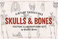 Graphic Design - Graphic Design Ideas  - 11 Skulls & Bones Illustration Set by Graphic Goods on Creative Market...   Graphic Design Ideas :     – Picture :     – Description  11 Skulls & Bones Illustration Set by Graphic Goods on Creative Market  -Read More –