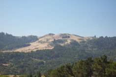 WIndy Hill, Portola Valley, CA