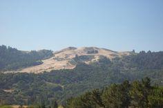 WIndy Hill, Portola Valley, CA