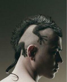 Lizard Iguana Hair Cut